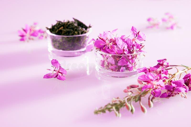 Όμορφη σύνθεση του τσαγιού από βότανα και των φρέσκων λουλουδιών στοκ εικόνα με δικαίωμα ελεύθερης χρήσης