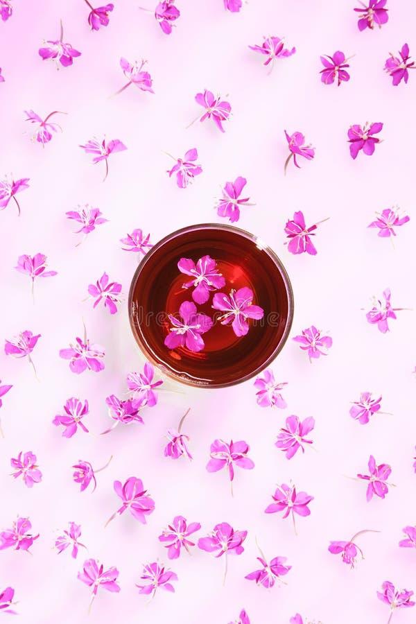 Όμορφη σύνθεση του τσαγιού από βότανα και των φρέσκων λουλουδιών στοκ φωτογραφία με δικαίωμα ελεύθερης χρήσης