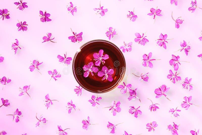 Όμορφη σύνθεση του τσαγιού από βότανα και των φρέσκων λουλουδιών στοκ φωτογραφίες με δικαίωμα ελεύθερης χρήσης