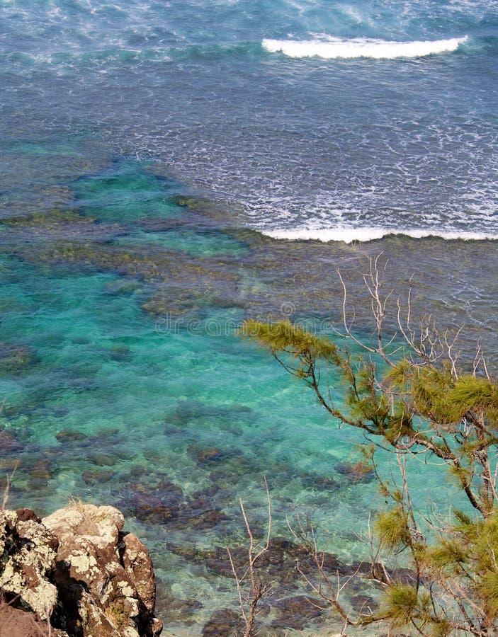 Όμορφη της Χαβάης ακτή στοκ φωτογραφία με δικαίωμα ελεύθερης χρήσης