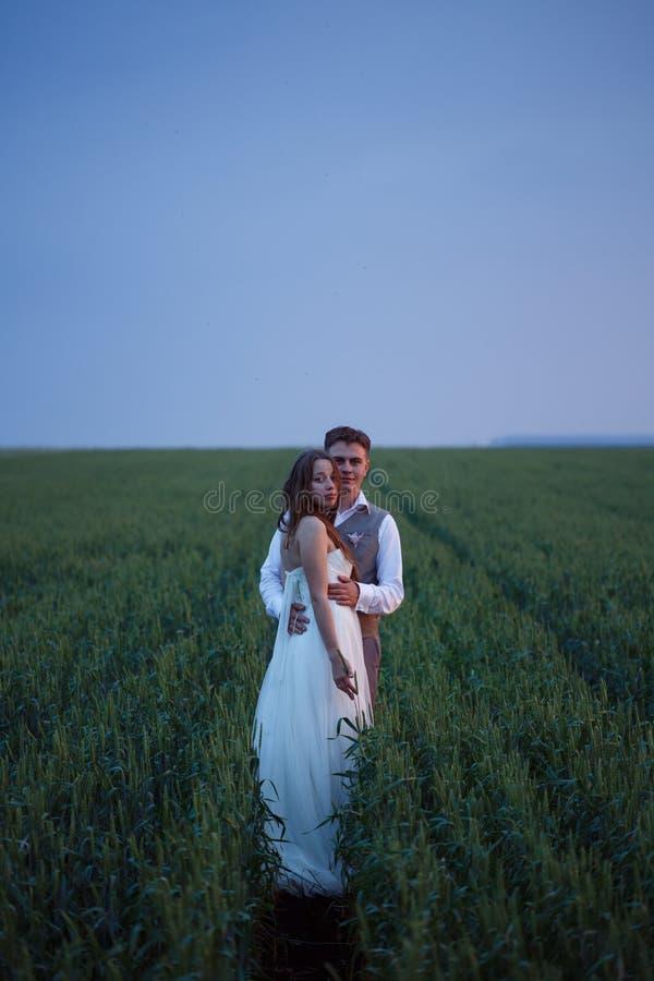 Όμορφη τοποθέτηση γαμήλιων ζευγών στη φύση στοκ φωτογραφία με δικαίωμα ελεύθερης χρήσης