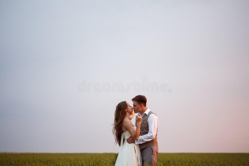 Όμορφη τοποθέτηση γαμήλιων ζευγών στη φύση στοκ φωτογραφίες με δικαίωμα ελεύθερης χρήσης