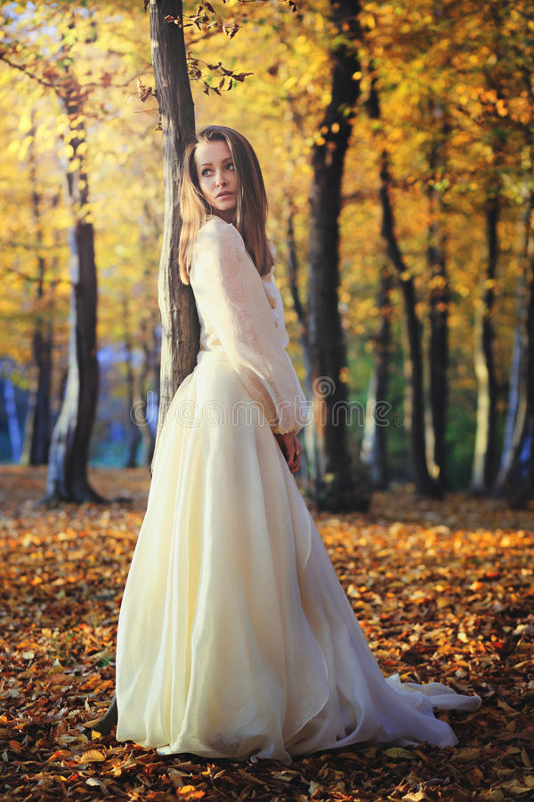 Όμορφη τοποθέτηση γυναικών στα ξύλα σημύδων στοκ εικόνες