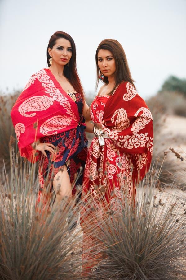 Όμορφη τοποθέτηση κοριτσιών ζεύγους στους θάμνους Έννοια φιλίας γυναικών στοκ φωτογραφία με δικαίωμα ελεύθερης χρήσης