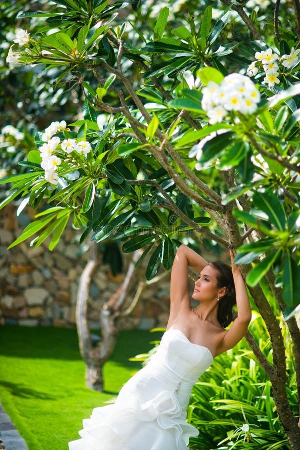 Όμορφη τοποθέτηση κοριτσιών στο γαμήλιο φόρεμα με τα τροπικά φύλλα στοκ εικόνες