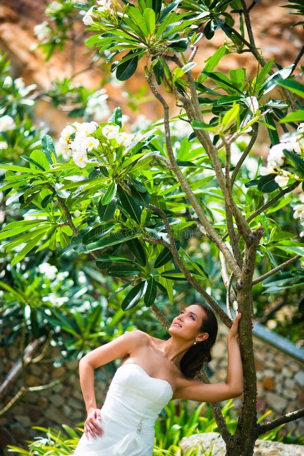 Όμορφη τοποθέτηση κοριτσιών στο γαμήλιο φόρεμα με το τροπικό δέντρο στοκ φωτογραφίες με δικαίωμα ελεύθερης χρήσης