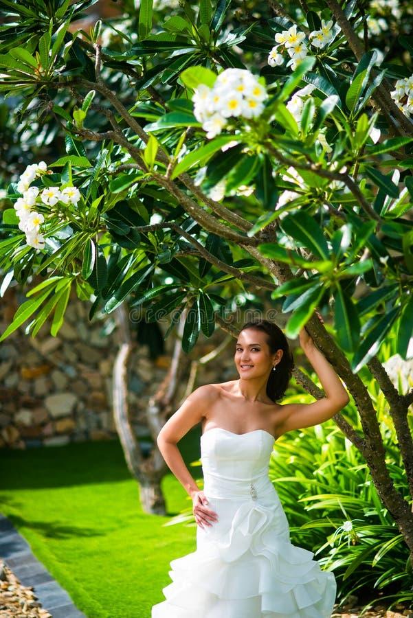 Όμορφη τοποθέτηση νυφών στο γαμήλιο φόρεμα με τα τροπικά φύλλα στοκ φωτογραφία με δικαίωμα ελεύθερης χρήσης