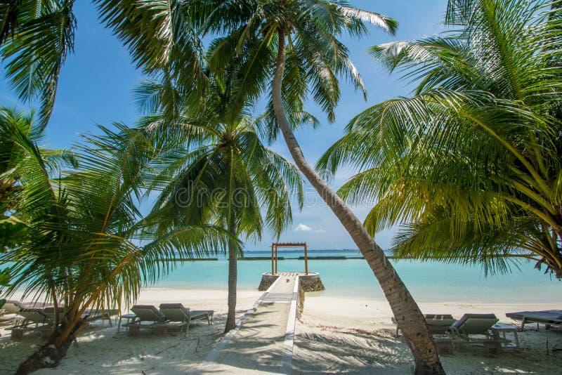 Όμορφη τροπική ηλιόλουστη άποψη τοπίων παραλιών με τους φοίνικες και τον ωκεανό στο νησί στο θέρετρο στοκ εικόνα