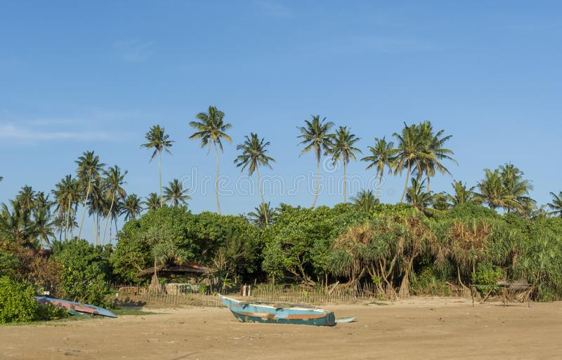 Όμορφη τροπική παραλία με τη βάρκα και τους φοίνικες του παλαιού ψαρά στοκ φωτογραφίες με δικαίωμα ελεύθερης χρήσης