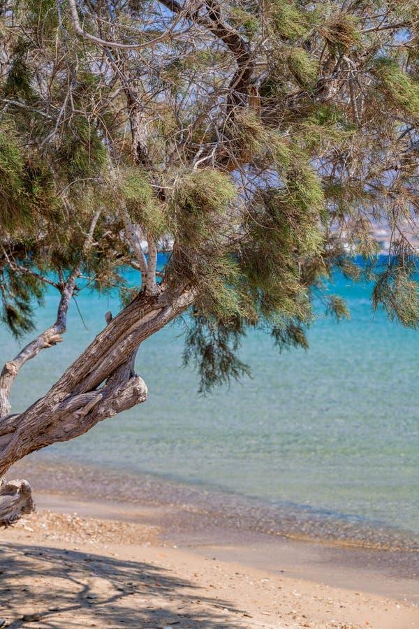 Όμορφη φύση του νησιού Antiparos της Ελλάδας με το μπλε νερό κρυστάλλου και τις καταπληκτικές απόψεις στοκ εικόνες