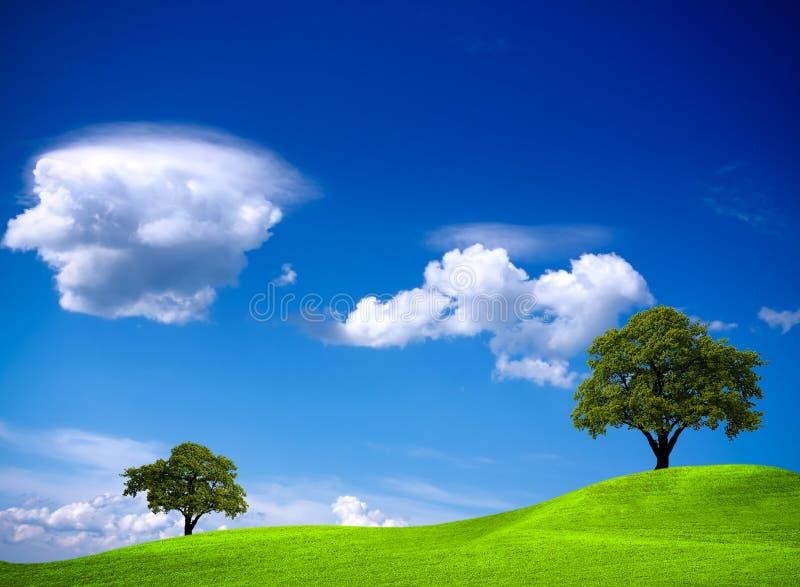 όμορφη φύση στοκ φωτογραφίες με δικαίωμα ελεύθερης χρήσης