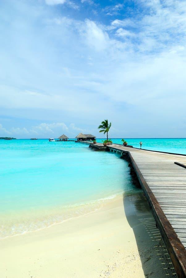 όμορφη ωκεάνια όψη στοκ φωτογραφία με δικαίωμα ελεύθερης χρήσης