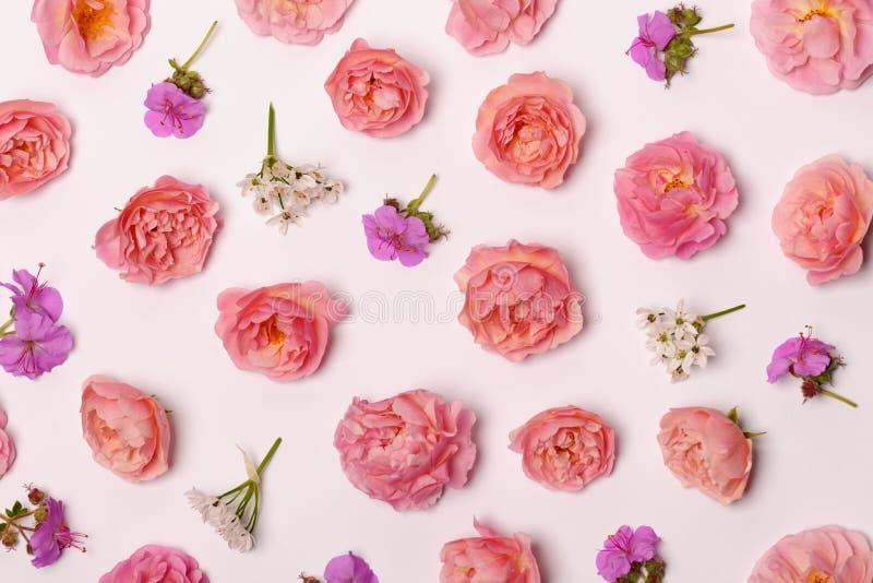 Όμορφη floral σύνθεση στοκ φωτογραφίες με δικαίωμα ελεύθερης χρήσης