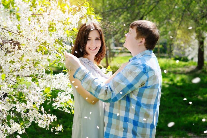 Όμορφοι άνδρας και γυναίκα που περπατούν στο ανθίζοντας πάρκο άνοιξη στοκ εικόνα