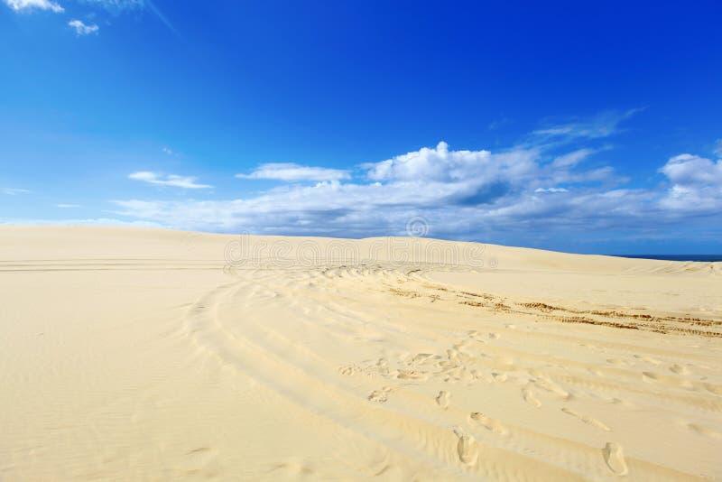 Όμορφοι αμμόλοφοι άμμου, Αυστραλία. στοκ εικόνες
