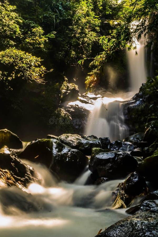 Όμορφοι καταρράκτες στα τροπικά δάση στοκ φωτογραφία με δικαίωμα ελεύθερης χρήσης