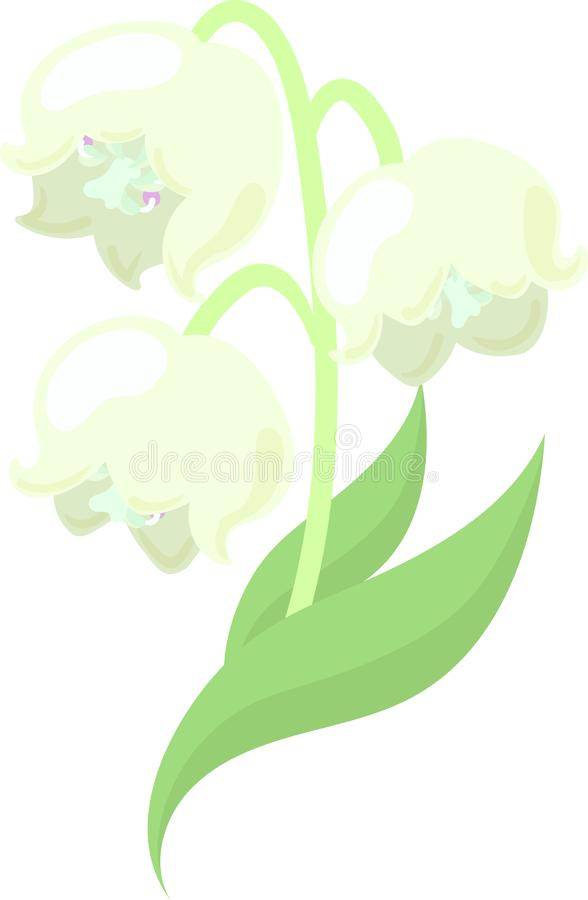 Όμορφοι κρίνοι της κοιλάδας διανυσματική απεικόνιση