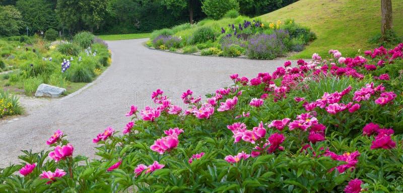 Όμορφοι κρεβάτια λουλουδιών και τρόπος περπατήματος στο Μόναχο westpark, Βαυαρία στοκ φωτογραφίες με δικαίωμα ελεύθερης χρήσης