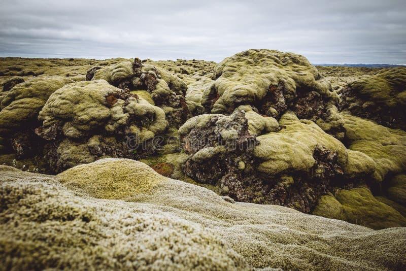 Όμορφοι πράσινοι λόφοι και τομείς στοκ φωτογραφίες