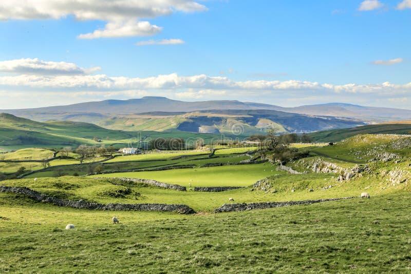 Όμορφοι του Γιορκσάιρ κοιλάδων βρετανικοί πράσινοι κυλώντας λόφοι Ευρώπη τουρισμού της Αγγλίας τοπίου τοπίων ζαλίζοντας στοκ φωτογραφία