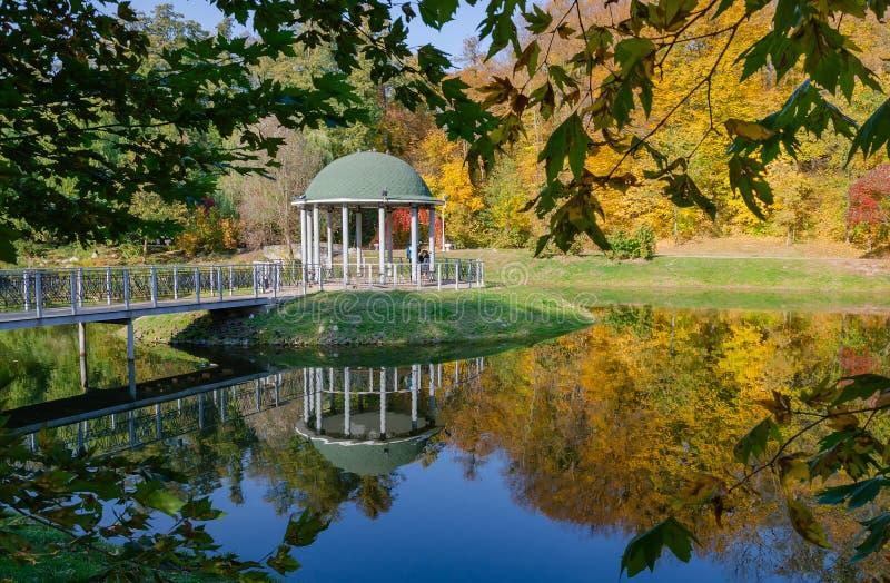 Όμορφος άξονας σε μια λίμνη, ηλιόλουστο απόγευμα φθινοπώρου στοκ εικόνα