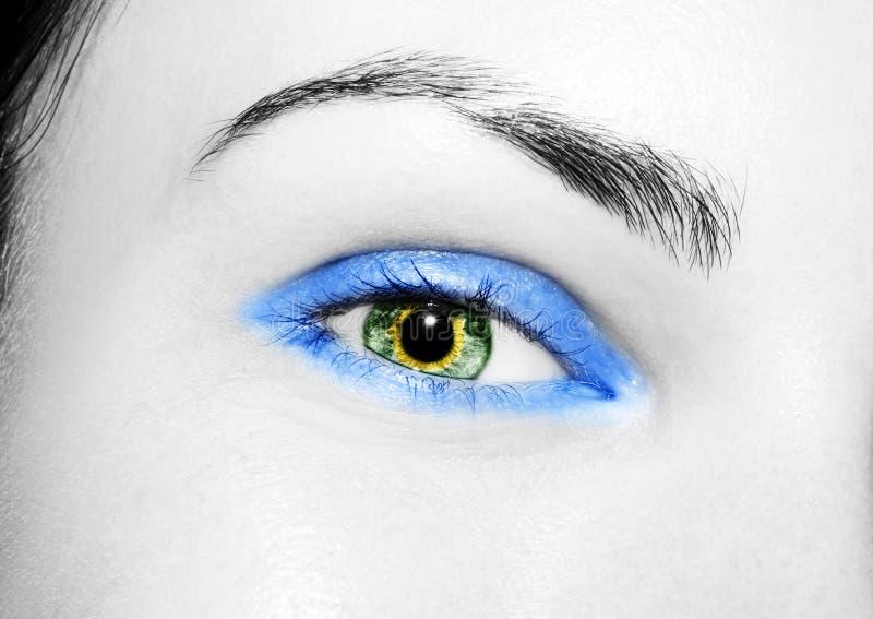 Όμορφος ένας οξυδερκής φαίνεται μάτι Κλείστε αυξημένος στοκ εικόνες με δικαίωμα ελεύθερης χρήσης