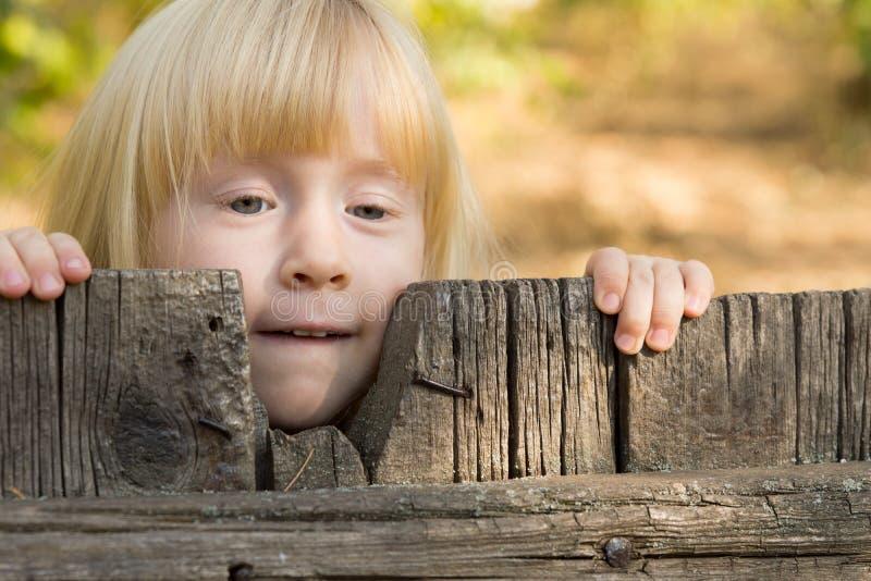 Όμορφος λίγο ξανθό κορίτσι που κοιτάζει αδιάκριτα πέρα από έναν φράκτη στοκ εικόνες με δικαίωμα ελεύθερης χρήσης