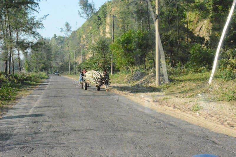 Όμορφος αγροτικός δρόμος στοκ εικόνες