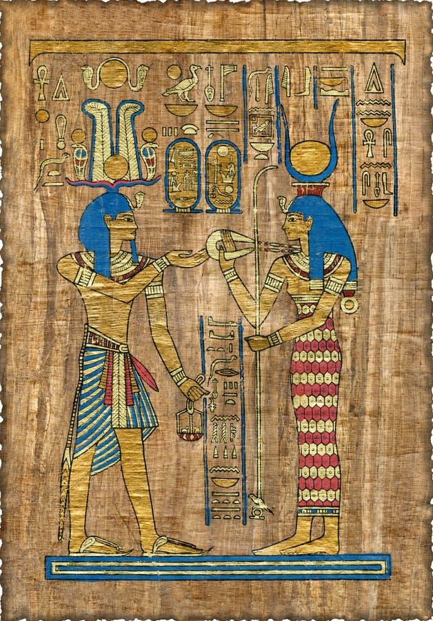 όμορφος αιγυπτιακός πάπυρος στοκ εικόνες με δικαίωμα ελεύθερης χρήσης