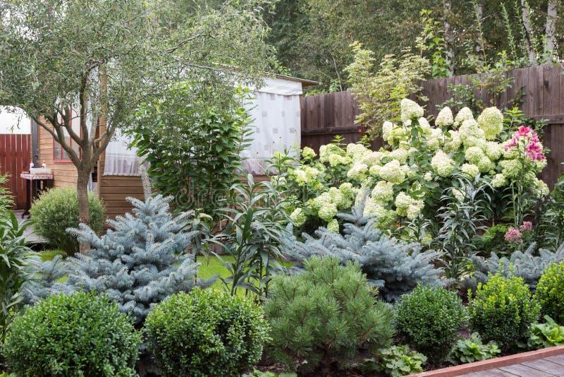 Όμορφος ανθίζοντας κήπος το ύψος του καλοκαιριού στοκ εικόνες με δικαίωμα ελεύθερης χρήσης