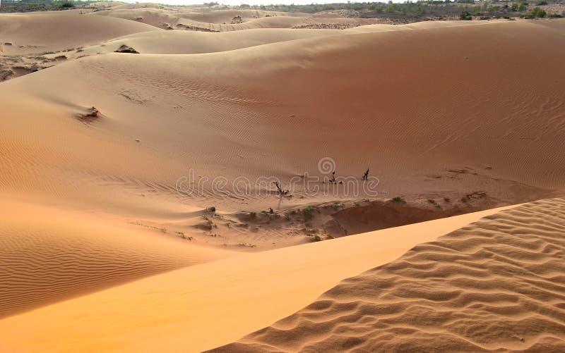 Όμορφος απέραντος και άθικτος αμμόλοφος άμμου στοκ εικόνες