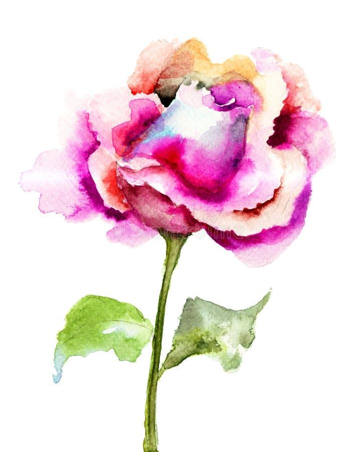 Όμορφος αυξήθηκε λουλούδι διανυσματική απεικόνιση