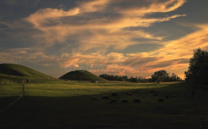 Όμορφος θερινός τομέας με το συμπαθητικό ηλιοβασίλεμα και τη βλάστηση Καλοκαίρι και θέμα τοπίων στοκ εικόνες με δικαίωμα ελεύθερης χρήσης