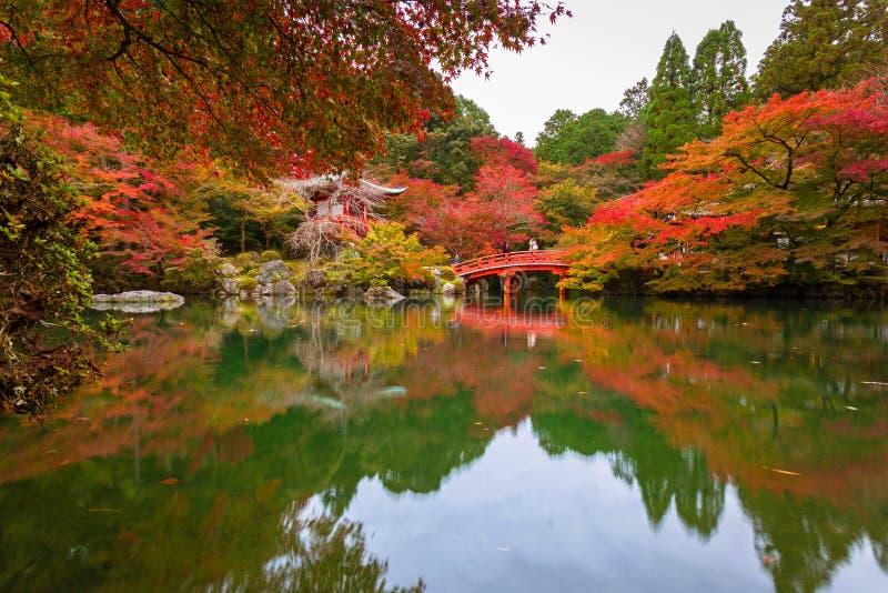 Όμορφος ιαπωνικός κήπος με τα ζωηρόχρωμα δέντρα σφενδάμνου το φθινόπωρο, Κιότο στοκ εικόνα
