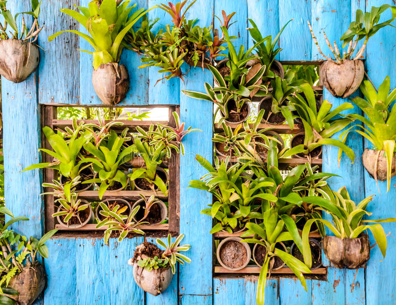 Όμορφος κάθετος κήπος στοκ φωτογραφίες