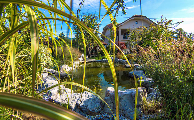 Όμορφος κήπος με τη λίμνη στοκ φωτογραφία με δικαίωμα ελεύθερης χρήσης