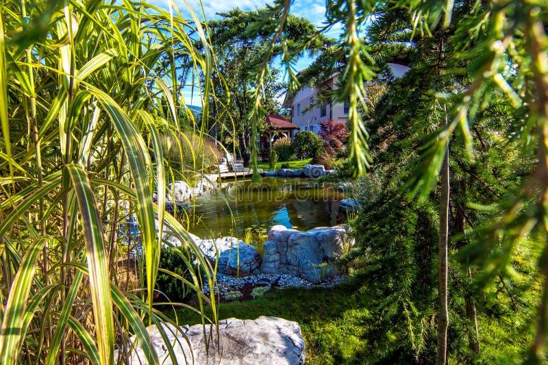 Όμορφος κήπος με τη λίμνη στοκ φωτογραφίες με δικαίωμα ελεύθερης χρήσης