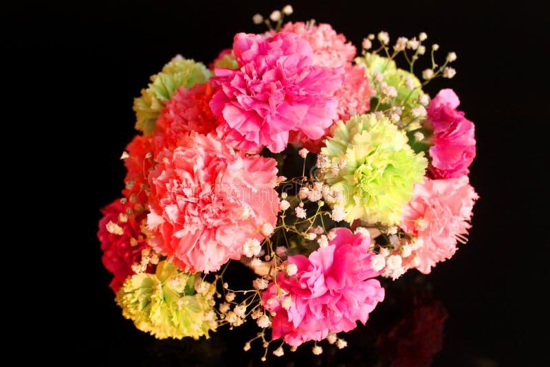 όμορφος κήπος λουλουδιών γαρίφαλων καρτών ανθοδεσμών ανασκόπησης στοκ εικόνες