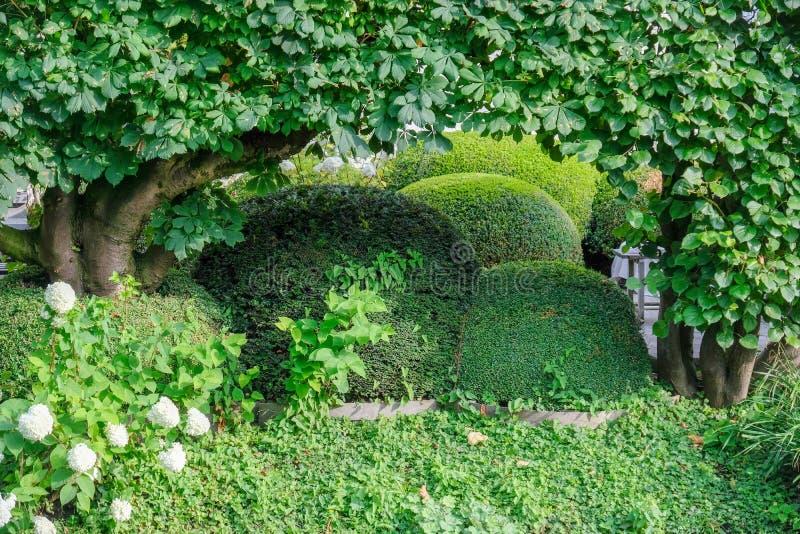 Όμορφος κήπος στο νερό σε πράσινο με το πυξάρι και τους Μπους στις Βρυξέλλες Βέλγιο στοκ εικόνες με δικαίωμα ελεύθερης χρήσης