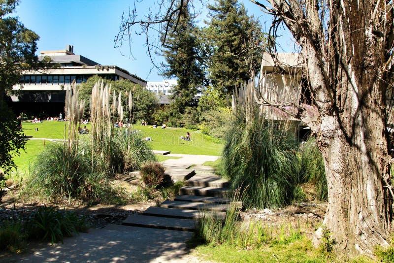 Όμορφος κήπος του μουσείου Gulbenkian στη Λισσαβώνα στοκ εικόνα