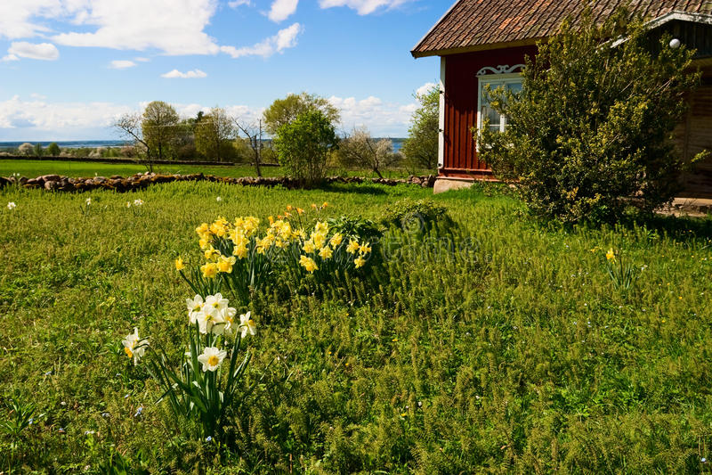 Όμορφος κήπος χωρών στοκ φωτογραφία με δικαίωμα ελεύθερης χρήσης