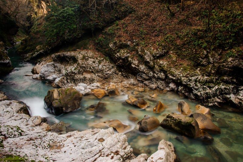 Όμορφος και γρήγορος κυανός ποταμός βουνών που ρέει στο αρχαίο φαράγγι Martvili στοκ εικόνα