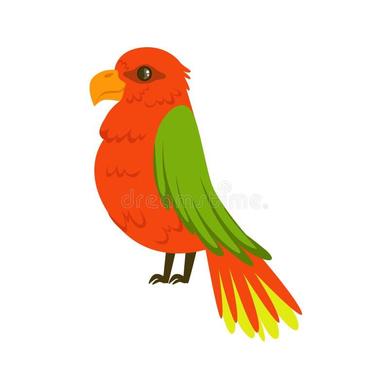 Όμορφος κόκκινος παπαγάλος με την πράσινη ζωηρόχρωμη διανυσματική απεικόνιση φτερών διανυσματική απεικόνιση