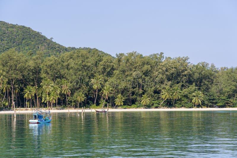 Όμορφος κόλπος με τους φοίνικες και τις βάρκες Τροπικά παραλία και θαλάσσιο νερό Koh Phangan, Ταϊλάνδη νησιών στοκ φωτογραφίες με δικαίωμα ελεύθερης χρήσης