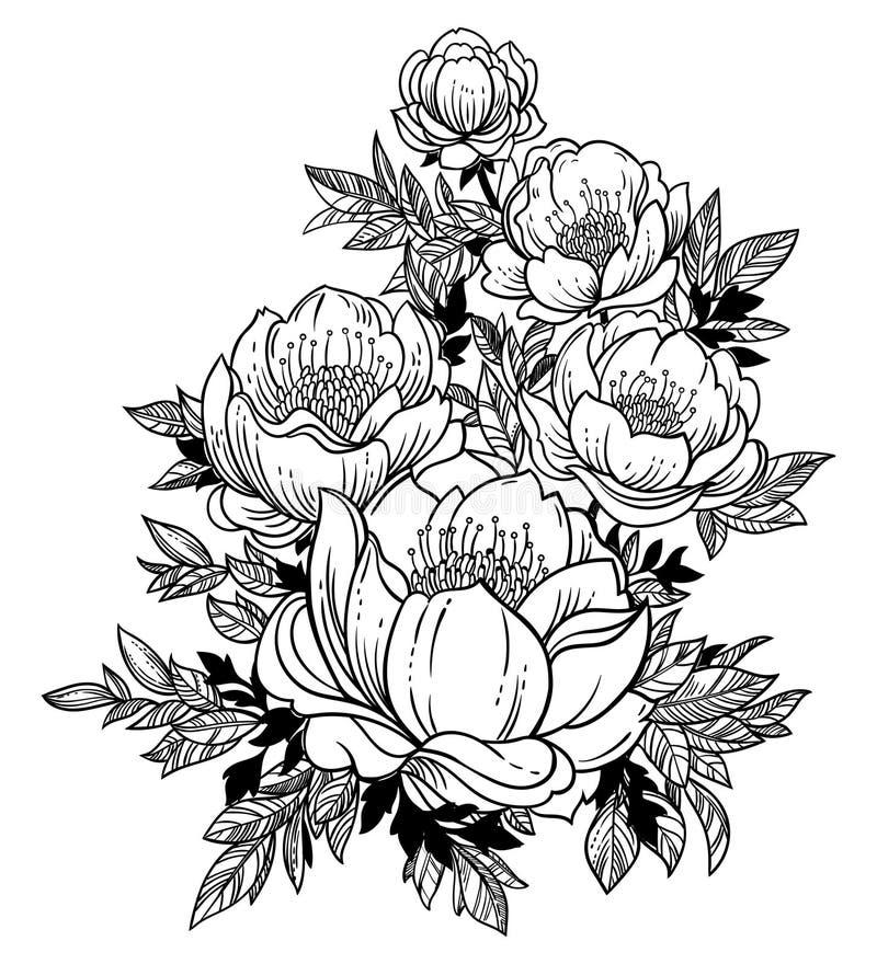 Όμορφος μίσχος του magnolia, dogrose ή των peony λουλουδιών απεικόνιση αποθεμάτων