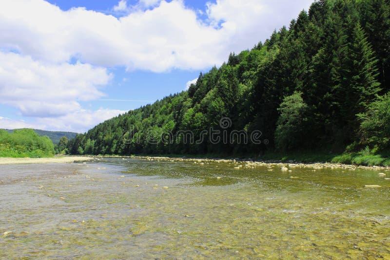 Όμορφος ορεινός ποταμός ταχύτητας στοκ φωτογραφίες με δικαίωμα ελεύθερης χρήσης