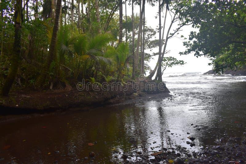 Όμορφος παράκτιος κολπίσκος στη Χαβάη με τα κύματα που συντρίβουν αργά στην ακτή στοκ φωτογραφίες με δικαίωμα ελεύθερης χρήσης