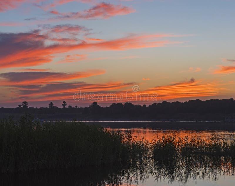 Όμορφος πορτοκαλής ουρανός ηλιοβασιλέματος πέρα από τον ποταμό με τους καλάμους χλόης στοκ εικόνα με δικαίωμα ελεύθερης χρήσης