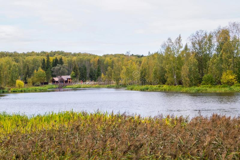 Όμορφος ποταμός τοπίων φθινοπώρου και κίτρινη χλόη στοκ φωτογραφίες με δικαίωμα ελεύθερης χρήσης