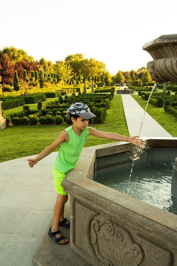 Όμορφος πράσινος κήπος στοκ φωτογραφίες με δικαίωμα ελεύθερης χρήσης